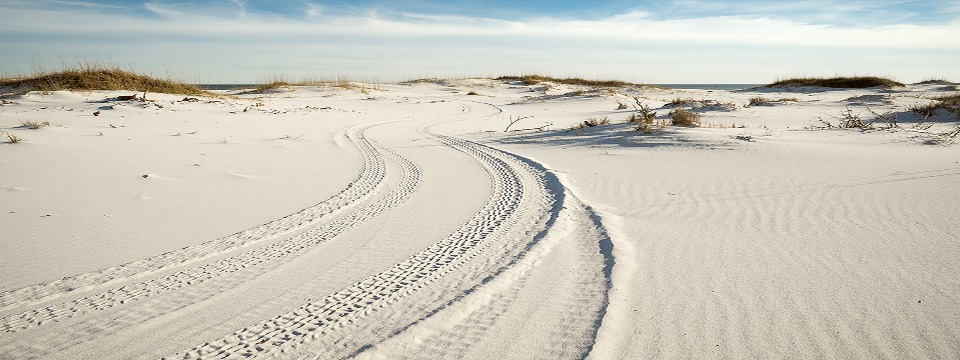 Winter on Florida's Gulf Coast